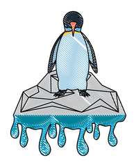 Penguin on melted ice icon over white background, colorful design. vector illustration