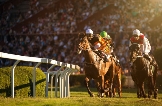 Two jockeys during horse races on their horses going towards finish line. Traditional European sport.