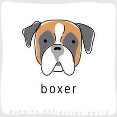 Dog Breed Collection : Vector Illustration