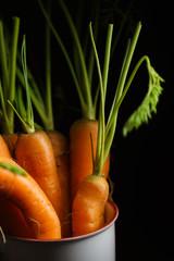 fresh carrots on black background