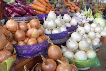 different varieties of onions are sold in trays on the market