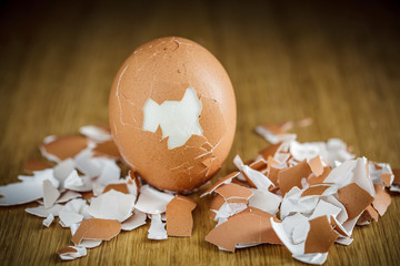 Broken boiled hen egg