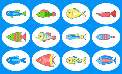 Set of cute fish. Isolated on white background. Vector illustration.