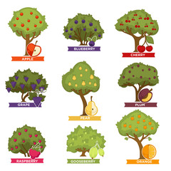 Orchard trees and bushes with ripe fruits with names