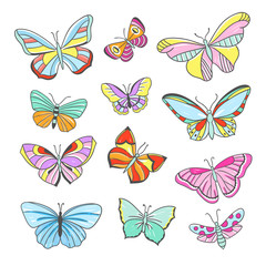 Butterfy collection. Beautiful flying butterflies and insects hand drawn illustrations