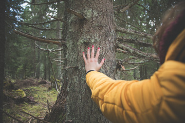 Female hand touching the tree bark in nature.