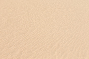 sand pattern of a beach in the summer
