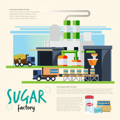sugar factory. from cane to sugar process. sugar industrial concept - vector