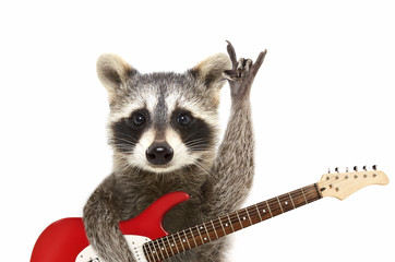 Portrait of a funny raccoon with electric guitar, showing a rock gesture, isolated on white background Wall mural