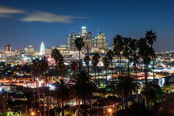 Beautiful night of Los Angeles downtown skyline and palm trees in foreground