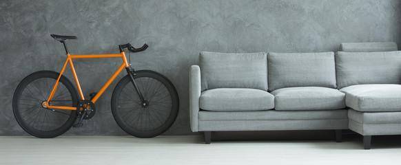 Grey sofa in living room interior