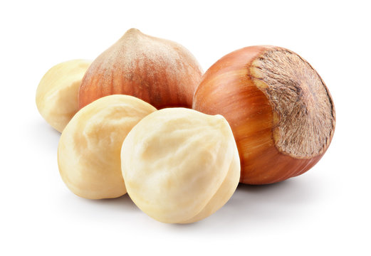 Hazelnut. Fresh organic filbert isolated on white background. Composition. With clipping path. Full depth of field.