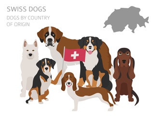 Dogs by country of origin. Swiss dog breeds. Infographic template
