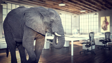 large elephant inside a modern office, concept of unsolved and avoided problems.