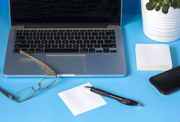 Workspace with laptop, pen and papers and flower in the pot on blue background