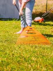 Woman using rake to clean up garden lawn