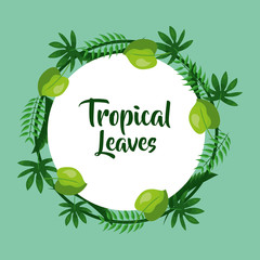 tropical leaves decoration natural badge vector illustration