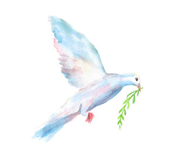 Watercolor hand drawn sketch illustration of white dove of the world with a green twig in its beak isolated on white