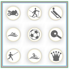 Sport Icon Set with sledging , soccer, swimming  and pole vaulting