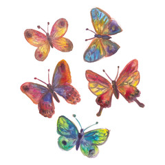 Watercolor painted butterflies collection
