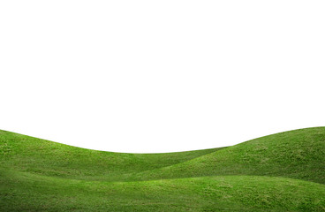 Printed kitchen splashbacks Hill Green grass hill background isolated on white. Outdoor of green meadow background.