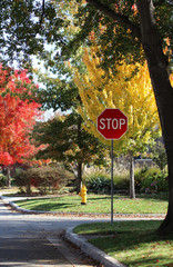 Stop sign and yellow fire hydrant at intersection in residential neighborhood with bright fall trees in background
