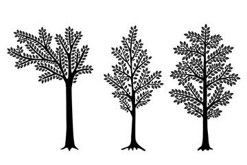 Set of Stylized abstract  trees isolated on white background. Vector illustration. Can be used for interior decoration