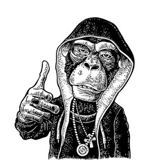 Monkey raper dressed in hoodie, necklace dollar. Vintage black engraving