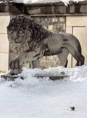Sculpture of a lion. And a tit in the snow in the gardens of Sinai, Romania in the winter.