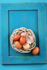 nest on a blue frame