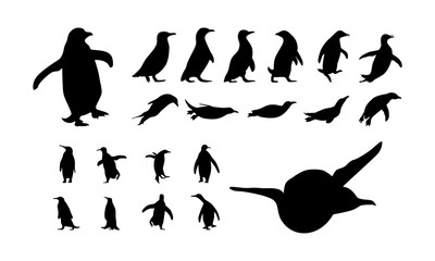 set of Various Penguin silhouette vector illustration