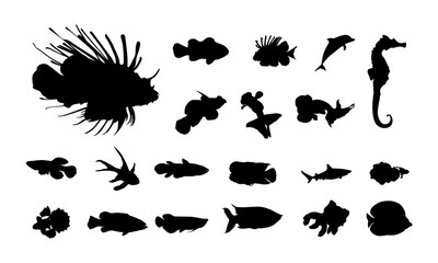 set of Various Fish Silhouette vector illustration