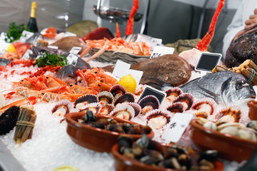 Large assortment of fresh seafoods suiting any taste on icy  showcase