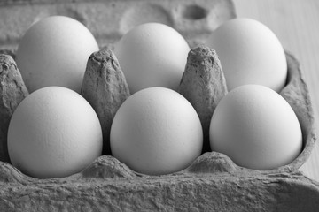 white chicken eggs in a cage, black and white photo