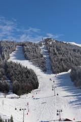 Auvergne-Rhône-Alpes - Isère - Villard-de-Lans -