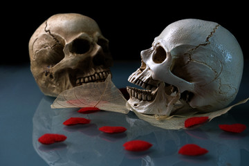 Two skull dry leaf and red heart in concept love never dies