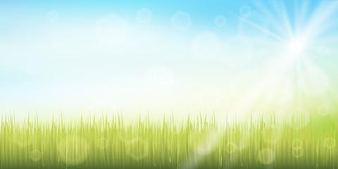 草原 空 風景 背景