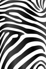 Zebra texture,Black&white background,cover webpage,poster or banner background,Modern design