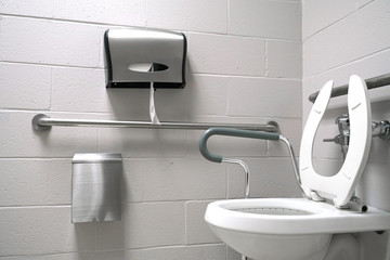 Close up on toilet with assistant handle