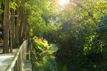 Taipei, Taiwan, community park, rest park, is a creek park