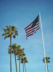 aged and worn photo of American flag and palm trees