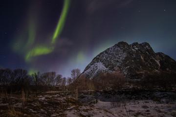 Aurora Borealis lofoten norway