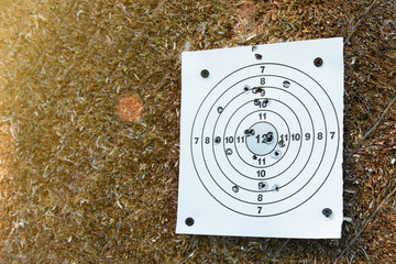The used paper target for shooting with holes