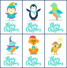 Merry Christmas Images on Vector Illustration