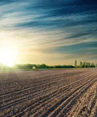 Foto op Textielframe Cultuur black agriculture field in sunset