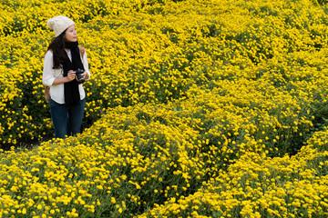 Woman in the chrysanthemum garden in Vietnam
