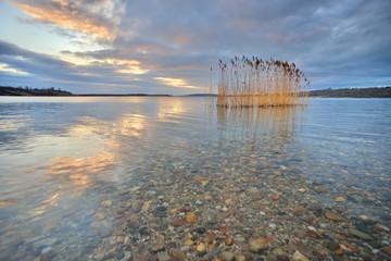 Morgens am See, Schilf und Wolken spiegeln sich bei Sonnenaufgang im klaren Wasser
