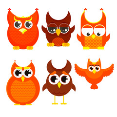 Flat cartoon owl set, owls with big eyes and small wings, vector illustration isolated on white background