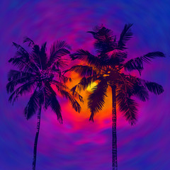 Dark palms silhouettes