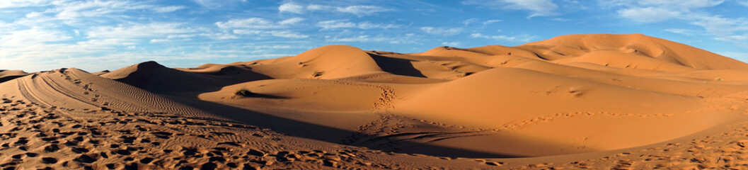 Photo sur Plexiglas Secheresse Sahara desert